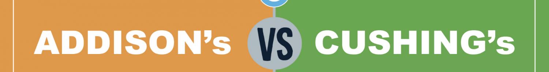 Infographic: Addisons vs Cushings